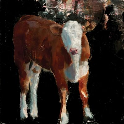 Nicolas V. Sanchez - Calf Reflection Study
